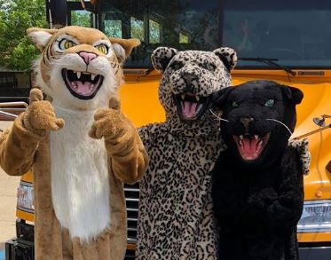 All three high school mascots
